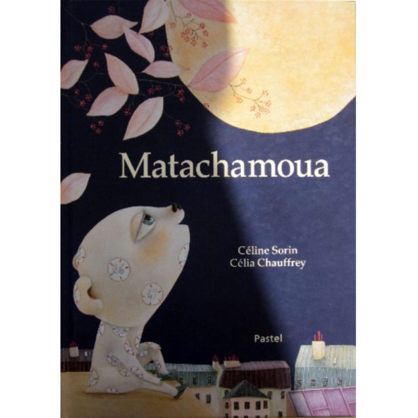 livres multimedias matachamoua gamins exceptionnels